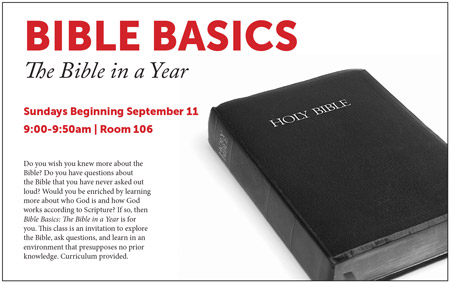 Bible basics the bible in a year the presbyterian church of bible basicssmall malvernweather Gallery