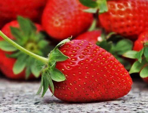 Strawberry Sunday on June 6